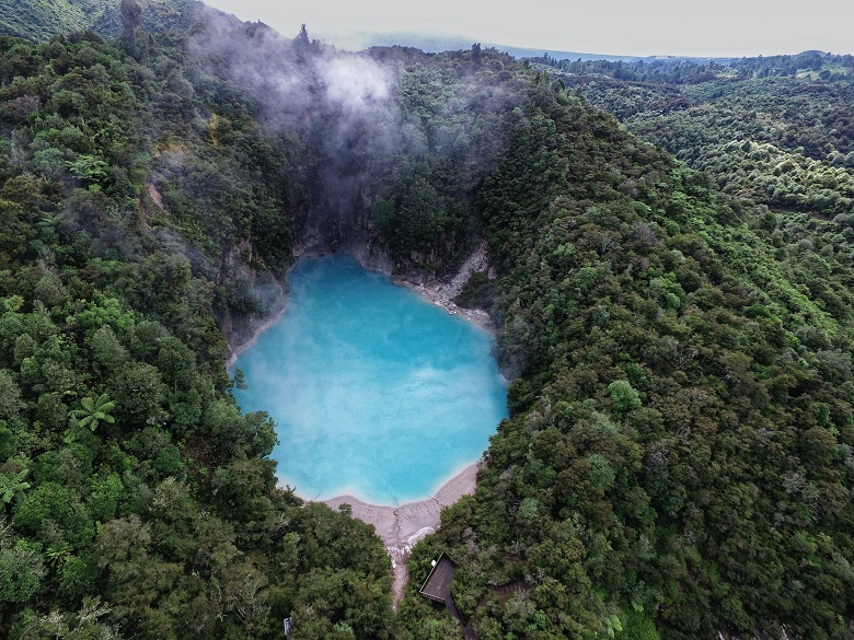 steaming blue natural pool surrounded by green forest