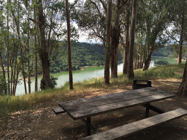 picnic table and fire ring overlooking green lake