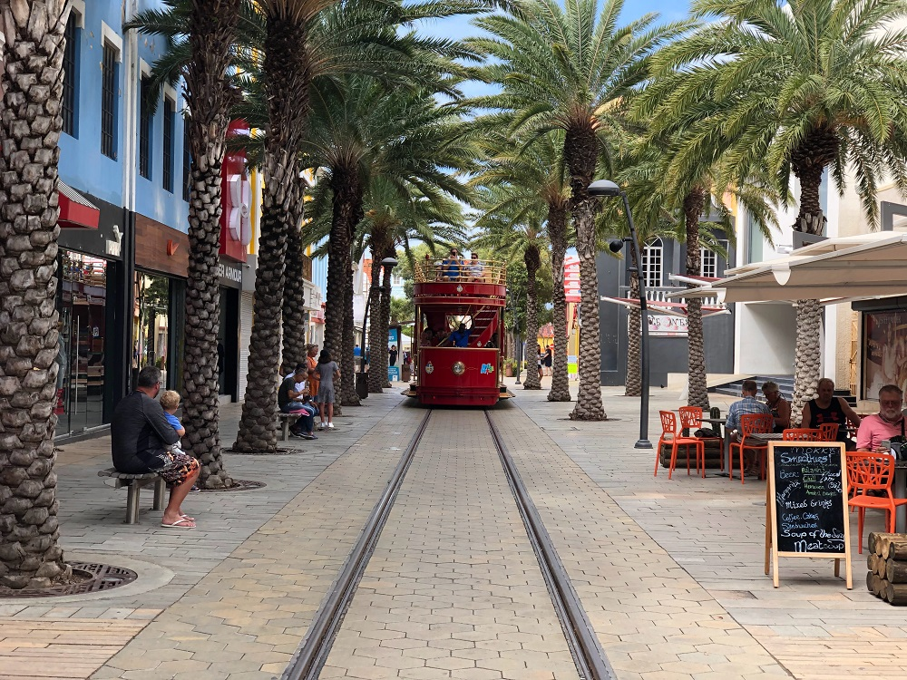 tramway lined with palm trees and shops